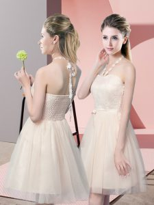 Admirable Tulle Sleeveless Mini Length Prom Evening Gown and Lace