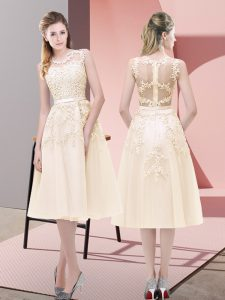 Flare Scoop Sleeveless Zipper Beading and Lace in Champagne