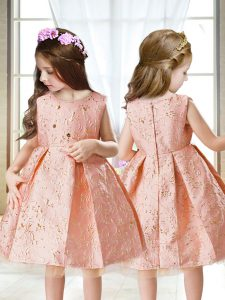 Gorgeous Pink A-line Scoop Sleeveless Satin Mini Length Zipper Embroidery Child Pageant Dress