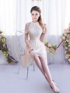 Charming Mini Length Champagne Dama Dress for Quinceanera Sleeveless Lace