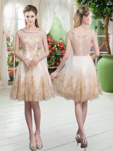 Glorious Sleeveless Zipper Knee Length Beading and Appliques Prom Gown