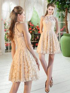 On Sale A-line Prom Gown Champagne High-neck Sleeveless Mini Length Zipper