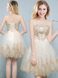 Most Popular Tulle Scoop Sleeveless Lace Up Appliques Quinceanera Court of Honor Dress in Champagne