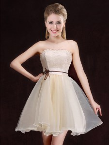 Vintage Organza Sleeveless Mini Length Dama Dress for Quinceanera and Lace