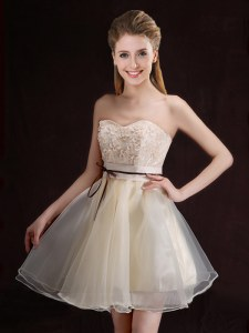 Glamorous Organza Sleeveless Mini Length Damas Dress and Appliques and Belt