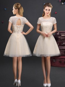 Scoop Short Sleeves Mini Length Lace and Appliques and Belt Lace Up Quinceanera Court Dresses with Champagne