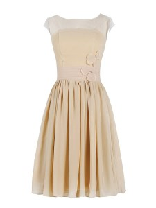 Scoop Champagne Column/Sheath Appliques and Ruching Prom Dress Zipper Chiffon Cap Sleeves Knee Length