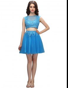 Popular Baby Blue Sleeveless Tulle Zipper Dress Like A Star for Prom and Party