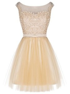 Tulle Sleeveless Mini Length Prom Dress and Lace