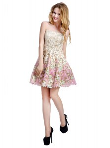 High Quality Off the Shoulder Multi-color Sleeveless Lace Zipper Club Wear for Prom and Party