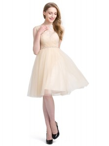 Pretty Clasp Handle Bateau Sleeveless Cocktail Dresses Knee Length Beading and Lace Champagne Tulle