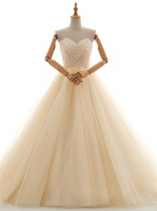 Champagne Sleeveless Lace Floor Length Wedding Dress