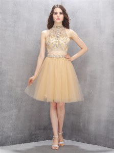 Clearance Champagne A-line Tulle High-neck Sleeveless Beading Knee Length Zipper Evening Dress