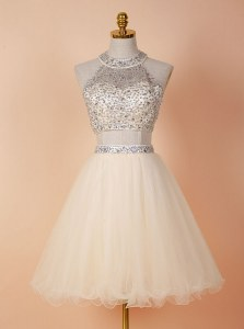 Deluxe Scoop Sleeveless Backless Knee Length Beading Prom Evening Gown