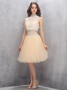 Custom Fit Champagne A-line High-neck Sleeveless Tulle Knee Length Zipper Beading and Embroidery Prom Gown