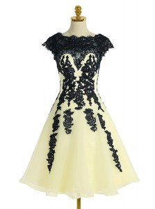Deluxe Light Yellow Prom Gown Prom and Party and For with Appliques Scalloped Cap Sleeves Zipper
