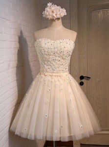 Romantic Appliques Prom Dresses Champagne Lace Up Sleeveless Mini Length