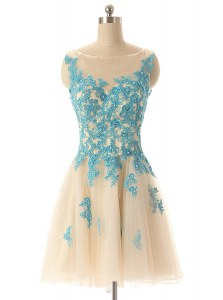 Customized Champagne Bateau Zipper Beading and Appliques Prom Gown Sleeveless