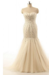 Mermaid Chiffon Sweetheart Sleeveless Brush Train Zipper Beading Evening Dress in Champagne