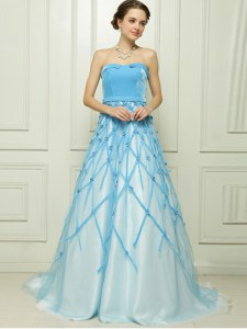 Baby Blue Zipper Strapless Appliques Evening Dress Tulle Sleeveless