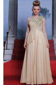 Column/Sheath Dress for Prom Champagne One Shoulder Chiffon Sleeveless Floor Length Side Zipper