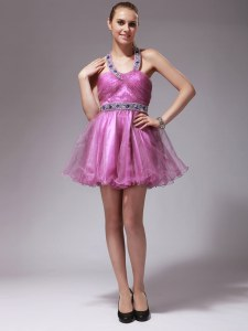 Sophisticated Halter Top Rose Pink Sleeveless Organza Zipper Prom Dress for Prom and Party