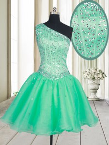 Vintage A-line Prom Dress Turquoise One Shoulder Organza Sleeveless Mini Length Lace Up