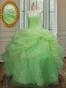Sleeveless Organza Floor Length Lace Up Ball Gown Prom Dress in with Embroidery and Pick Ups