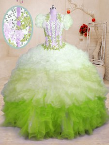 Luxurious Organza Sleeveless With Train Sweet 16 Dresses Brush Train and Beading and Appliques and Ruffles