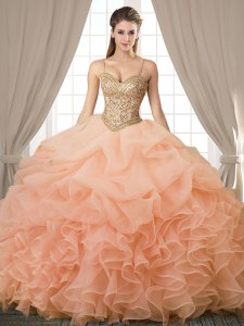 Luxury Organza Sleeveless Floor Length Sweet 16 Dress and Beading and Ruffles and Pick Ups