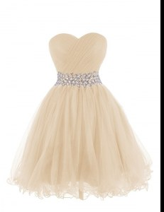 Sophisticated Organza Sweetheart Sleeveless Lace Up Belt Homecoming Dress in Champagne