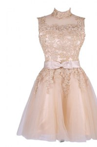 Tulle Sleeveless Knee Length Homecoming Dress and Appliques