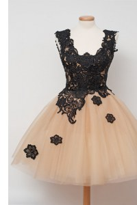 Fashion Champagne Sleeveless Tulle Zipper Dress for Prom for Prom and Party