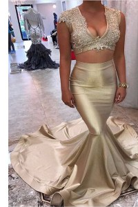 Fantastic Mermaid Appliques Prom Dress Champagne Zipper Sleeveless Court Train