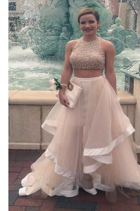 Sophisticated Scoop Floor Length Champagne Prom Evening Gown Tulle Sleeveless Sequins