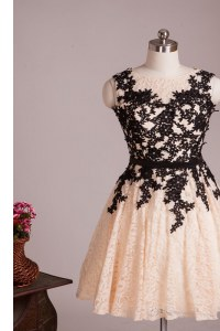 A-line Prom Dress Champagne Scoop Lace Sleeveless Knee Length Zipper