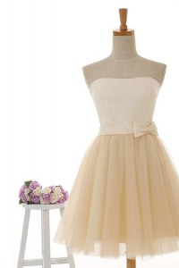 Chic Champagne Tulle and Lace Zipper Homecoming Dress Sleeveless Knee Length Lace