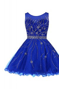 Fantastic Knee Length A-line Sleeveless Royal Blue Prom Gown Zipper