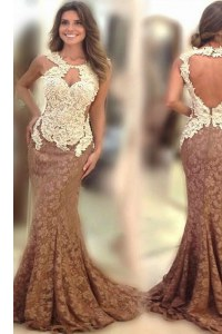 Suitable Scoop Brown Mermaid Appliques Prom Party Dress Backless Lace Sleeveless