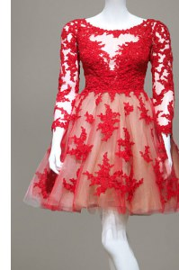 Scoop Long Sleeves Lace Homecoming Dress Appliques Zipper