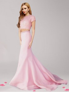 Free and Easy With Train Pink Dress for Prom Scoop Short Sleeves Brush Train Zipper