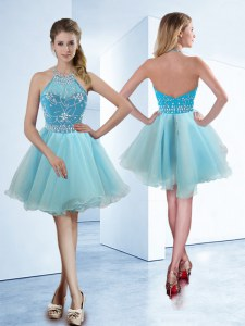 Hot Sale Halter Top Light Blue Sleeveless Organza Zipper Prom Gown for Prom and Party